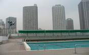 越中島プール